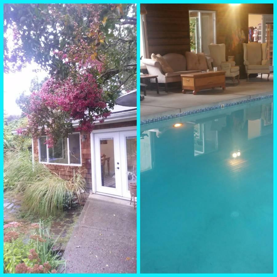 ross-split-myrtle-pool.jpg